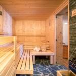 Bergchalet Sauna 1